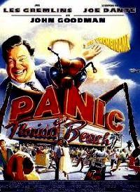 PANIC SUR FLORIDA BEACH | MATINEE | 1993