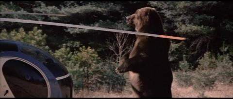 GRIZZLY LE MONSTRE DE LA FORET | GRIZZLY | 1976